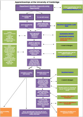 Click to view aprrenticeships at the Univerity process flowchart