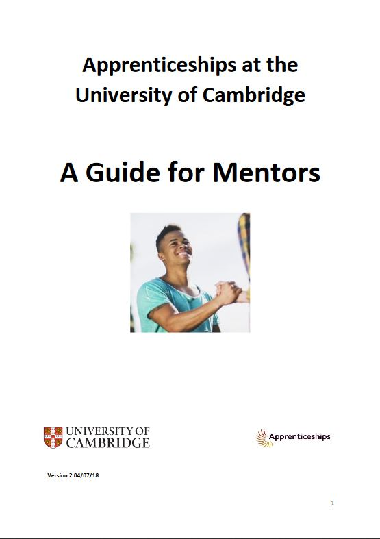 Click to view A guide for mentors